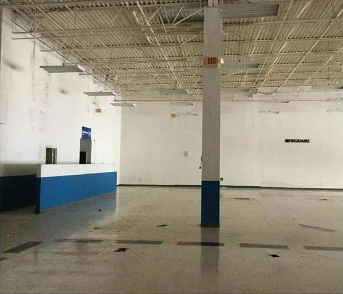 Retail store, emptied out, covered in mold