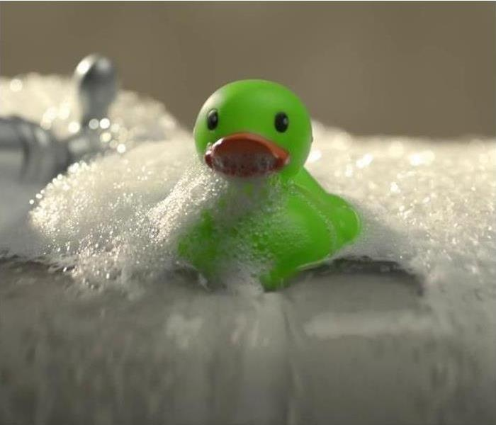 SERVPRO green duck in bubbles