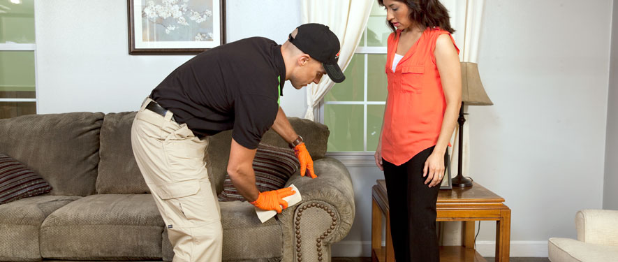 Ventura, CA carpet upholstery cleaning