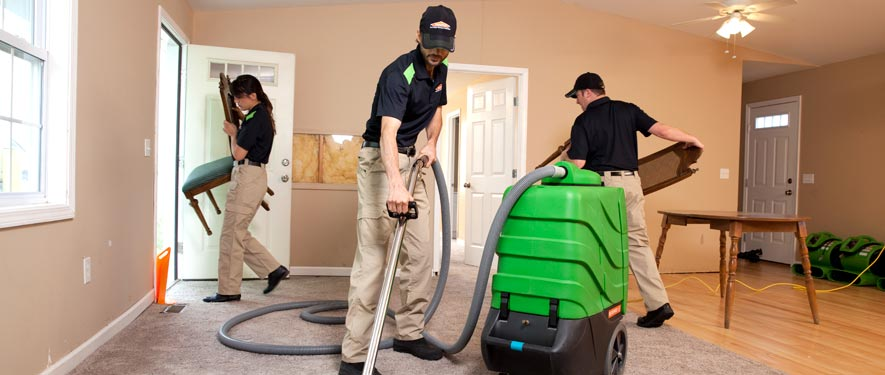 Ventura, CA cleaning services